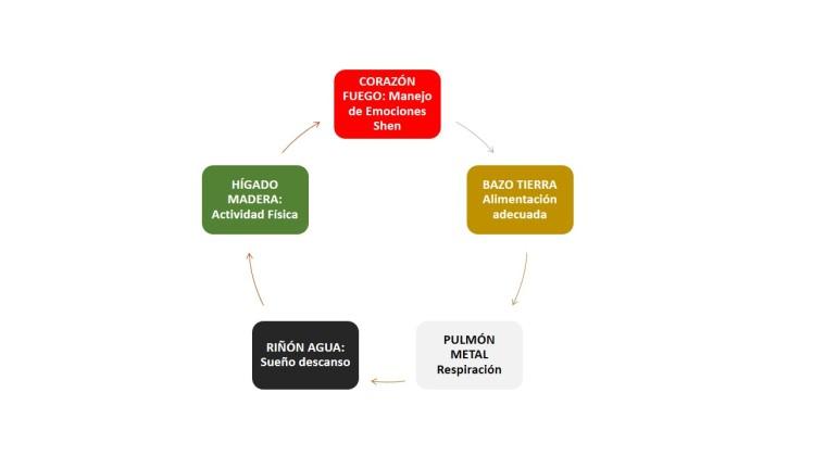 5 acciones MTC